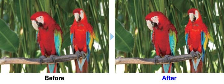 Tối ưu chất lượng hình ảnh nhờ công nghệ xử lý hình ảnh với 5 chế độ cài sẵn